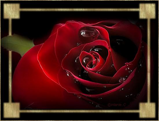 etre naturiste LHaÿ-les-Roses
